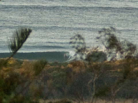 Nice little set wave at DY beach